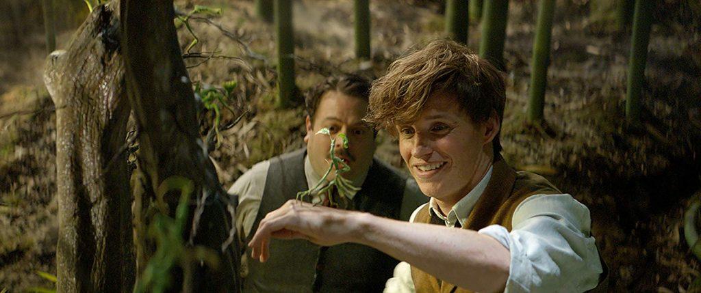 Fantastic Beasts Eddie