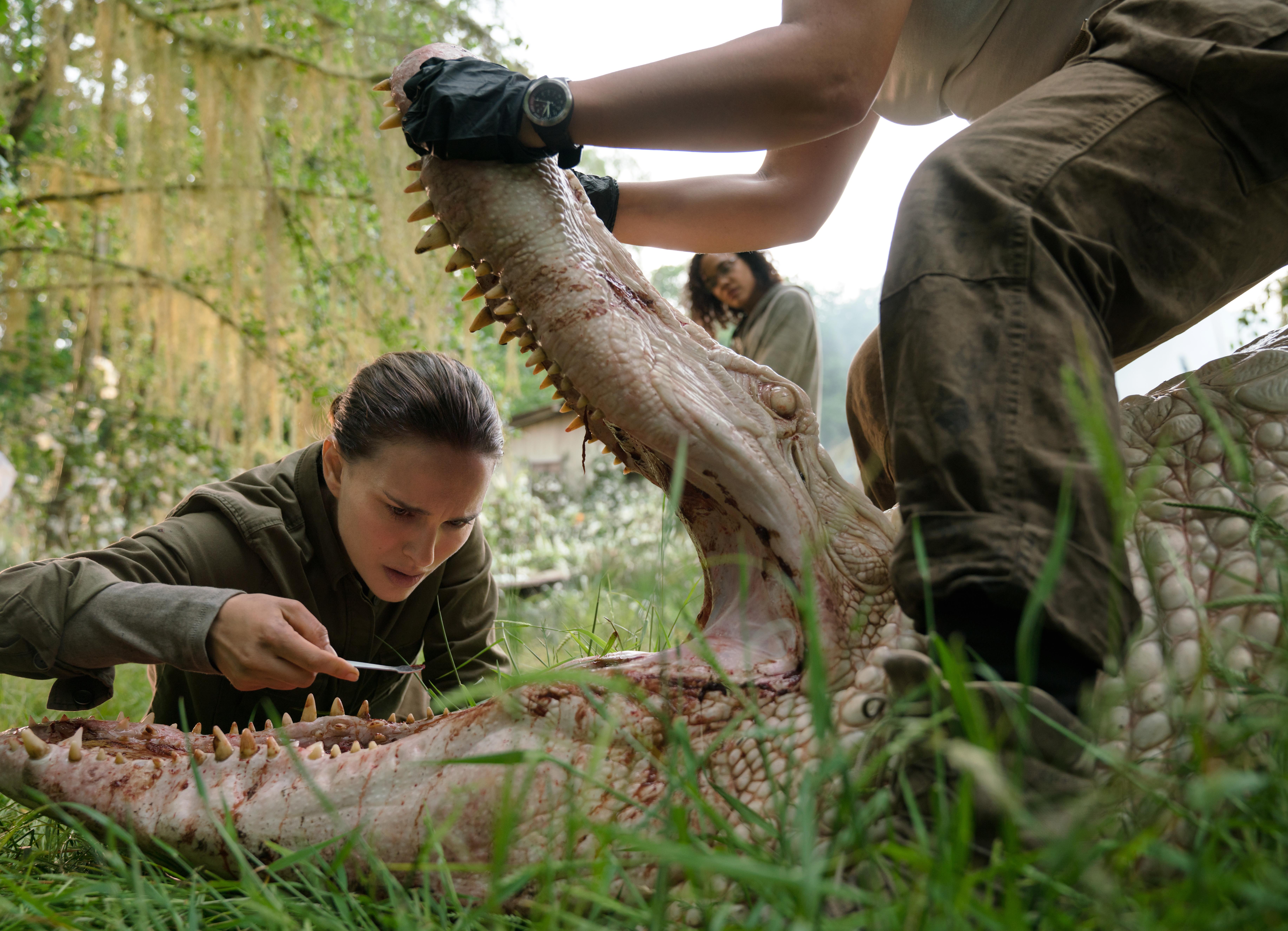 Annihilation krokodil