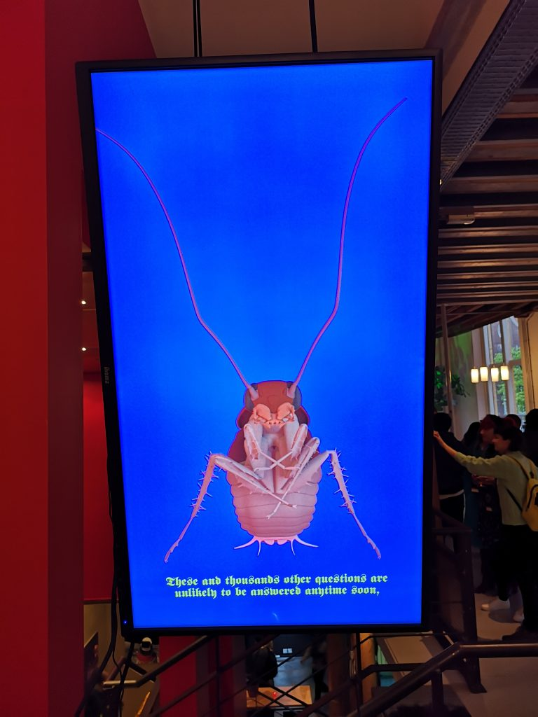 Other Futures: A Multispecies Experiment reportage: insect