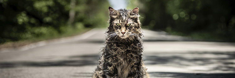 Pet Sematary - Kat