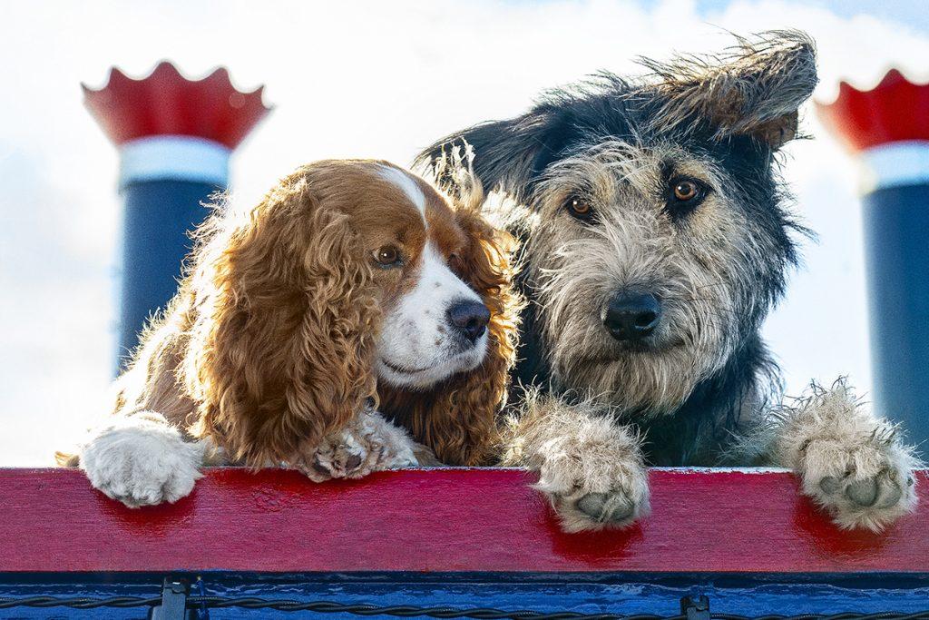 Lady en de Vagebond - Lady en Vagebond op de boot
