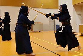 Stichting Yushinkan
