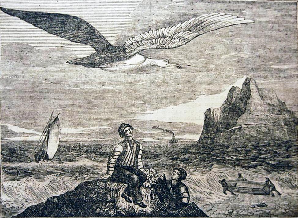 Zeemanslegendes - Albatros houtsnede