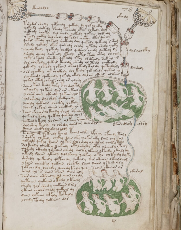 Johan Klein Haneveld - Inspiratie - Voynich Manuscript