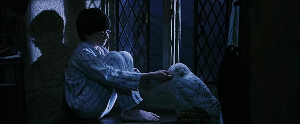 Harry Potter 4K UHD - Harry en Hedwig